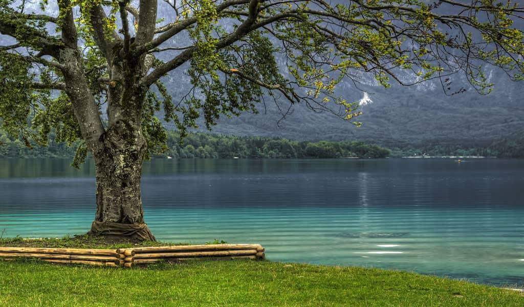 مزایای سرمایه گذاری در اسلوونی